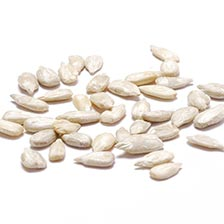 Sunflower Seeds, Raw without shells